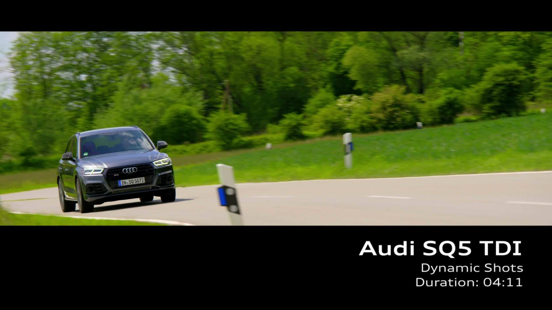 Audi SQ5 TDI (Footage)